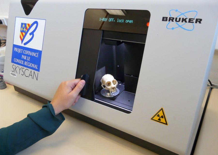 Micro-tomographe à rayons X à Biogéosciences
