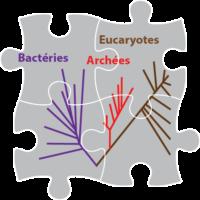 Evolution et reconstitution des paléoenvironnements